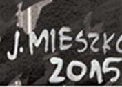 Sygnatura Joanny Mieszko