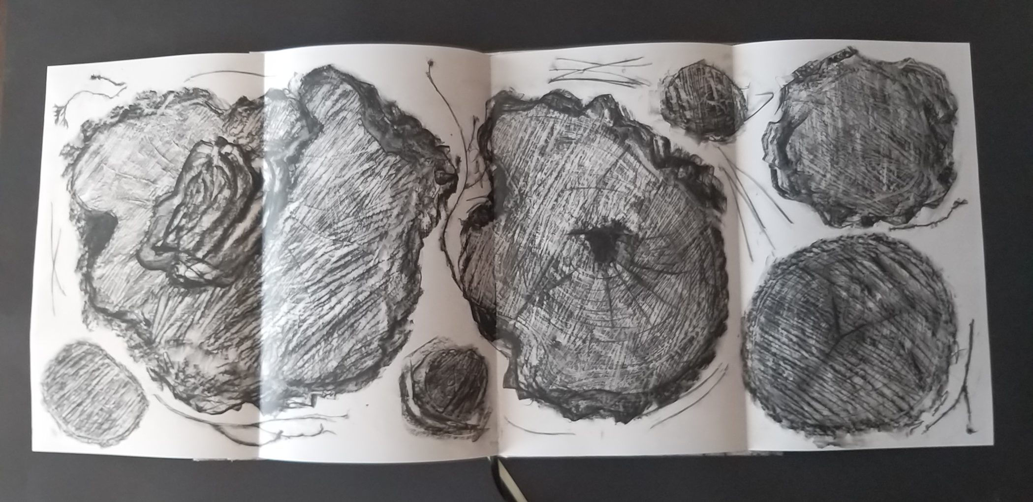 """Ilustracja z książki autorstwa Grażyny Pasterskiej-Napadło """"Nie bajka leśna"""", 2019 rok"""
