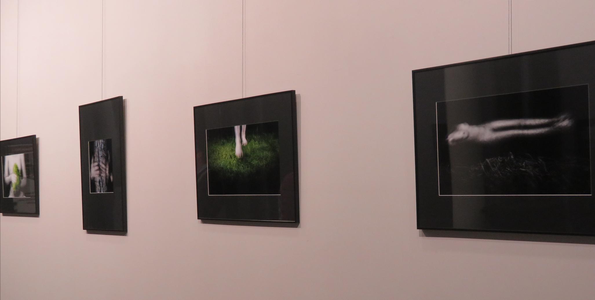 Fragment wystawy Mary autorstwa Krzysztofa Ślachciaka, ZUT w Szczecinie