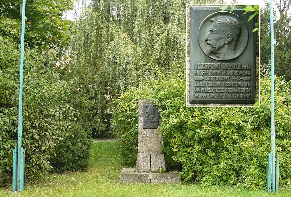Pomnik Józefa Rivoli przy Kolegium Cieszkowskich w Poznaniu, fot. MOs810  https://commons.wikimedia.org/w/index.php?curid=11872414  dostęp 28.04.2020